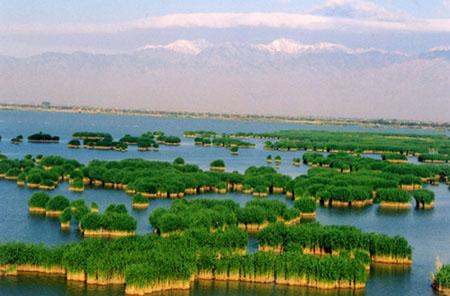 新闻名称:沙湖旅游 添加日期:2009-09-20 20:45:27 浏览次数:5049